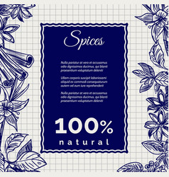 spices banner on notebook page vector image