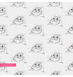seamless pattern surprised cute cats vector image vector image