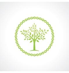 symbol of tree vector image