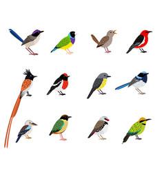 Beautiful flying bird set vector
