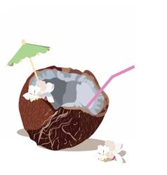 Fresh coconut isolated vector