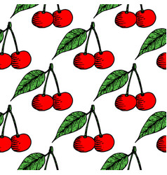 red cherries seamless pattern hand drawn sketch vector image