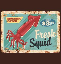 squid seafood metal rusty plate vector image