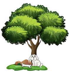 A cute dog under the tree vector image vector image