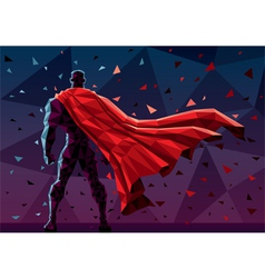 Low Poly Superhero vector image vector image