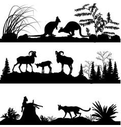 wild animals kangaroos sheep wild cats vector image