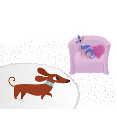 cat and dog characters dachshund and sphinx vector image