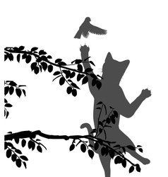 Cat hunting bird vector image