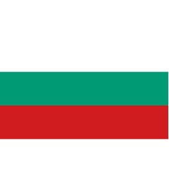 flag of bulgaria flag with official colors vector image