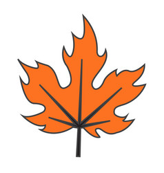 Flat color maple leaf icon vector