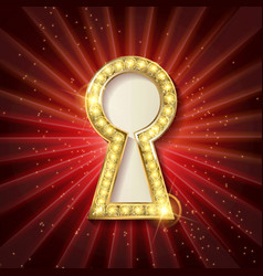 golden keyhole vector image