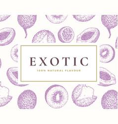 hand drawn exotic fruits card vector image