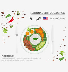 Malayan cuisine asian national dish collection vector