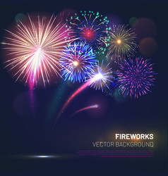 Realistic fireworks explosions with shining sparks vector