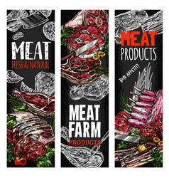 Sketch meat farm fresh product banners vector