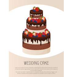 Three-tier cake with chocolate and cream layers vector