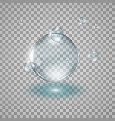 water drops realistic vector image