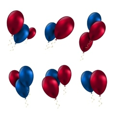 balloon birthday decoration celebrate party set vector image