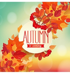 Autumn is coming - background vector image