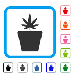 cannabis pot framed icon vector image