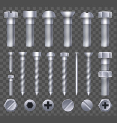 creative of steel brass bolts vector image