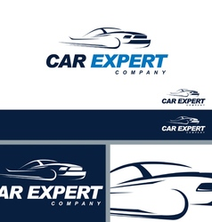 Car Automotive Symbol Branding ElementTemplate vector image