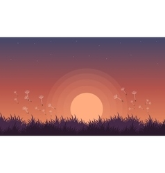 At night spring landscape with flower vector image