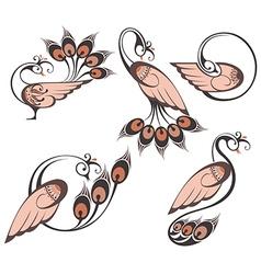 Peacocks symbols vector image