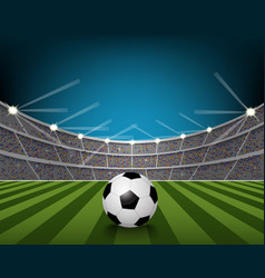 Soccer ball on the field of stadium with light vector image