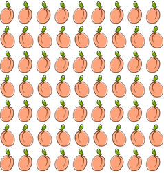 apricot wallpaper on white background vector image