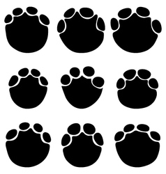 footprints of elephants vector image