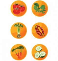 icons veggies vector image