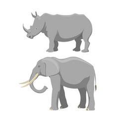 african elephant and rhinoceros cartoon vector image