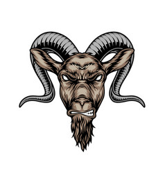 Colorful angry horned goat head vector