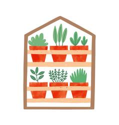 Houseplants in ceramic pots flat vector