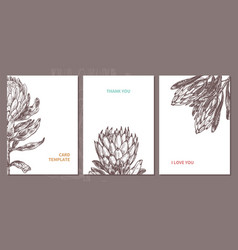 minimalistic trendy cards with protea vector image