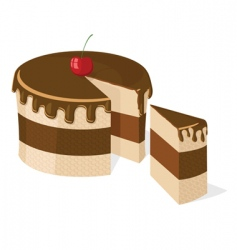 vector sliced chocolate cake vector image