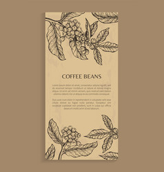 Coffee beans poster brown vector