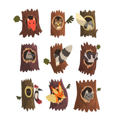 Cute animals and birds sitting in hollow of tree vector