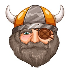 Man viking vector