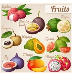 Set cartoon food icons exotic fruits lychee vector