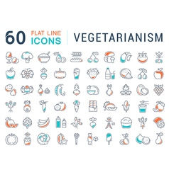 Set Flat Line Icons Vegetarianism vector