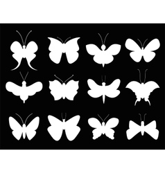 Butterflies black and white flat style vector image vector image
