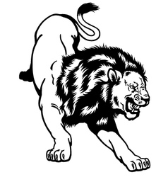 lion black and white vector image vector image
