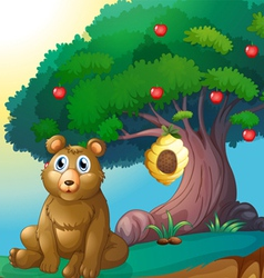 A bear in front of a big apple tree with a beehive vector