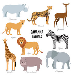 african animals savanna elephant rhino vector image