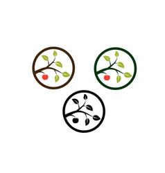 Apple tree branch vector