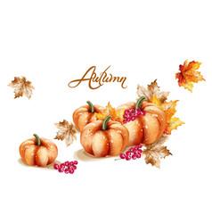 autumn fall vegetables watercolor pumpkin vector image