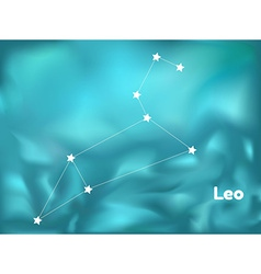 Constellation leo vector