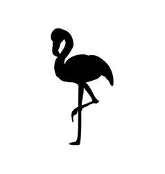 flamingo bird silhouette vector image